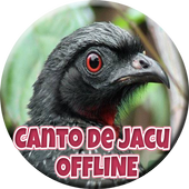 Canto de Jacu HD icon