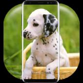 Cute Little Puppies Lock Screen icon