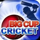 Big Cup Cricket Free APK