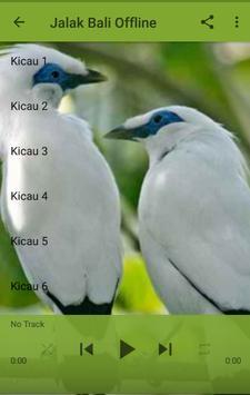 Kicau Jalak Bali poster