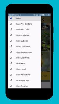 Master Kicau Burung Populer Indonesia poster