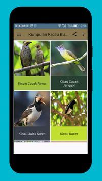 Master Kicau Burung Populer Indonesia apk screenshot