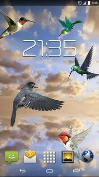 Sky Birds Live Wallpaper apk screenshot