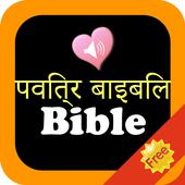 Hindi English Holy Bible Offline Audio icon