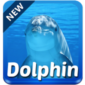 Dolphin Keyboard icon