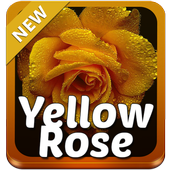 Yellow Rose Keyboard icon