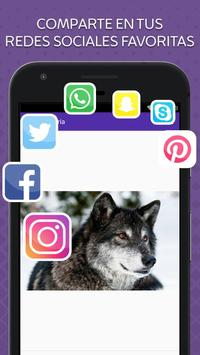 Imagenes de Lobos screenshot 4