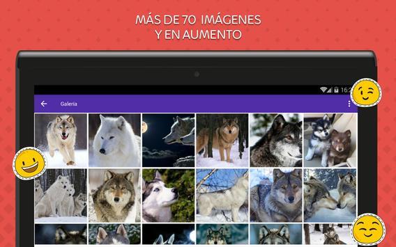 Imagenes de Lobos screenshot 9