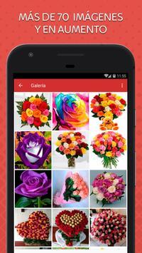 Rosas de Colores para Enamorar poster