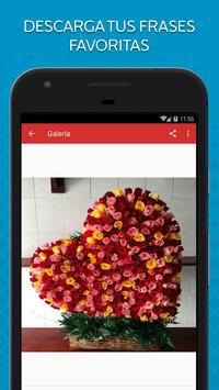 Rosas de Colores para Enamorar screenshot 2
