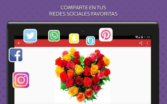 Rosas de Colores para Enamorar screenshot 8