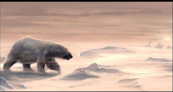 Bear Wallpapers: Bear Images, Free Bear Pictures screenshot 7