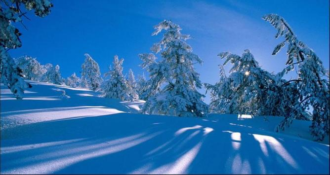 Nice Winter Pictures: Nature Themes, Winter images screenshot 3