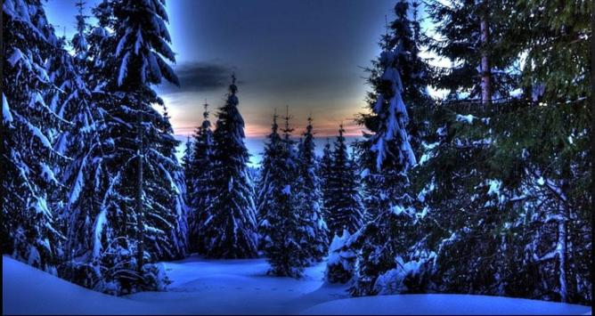 Nice Winter Pictures: Nature Themes, Winter images screenshot 1