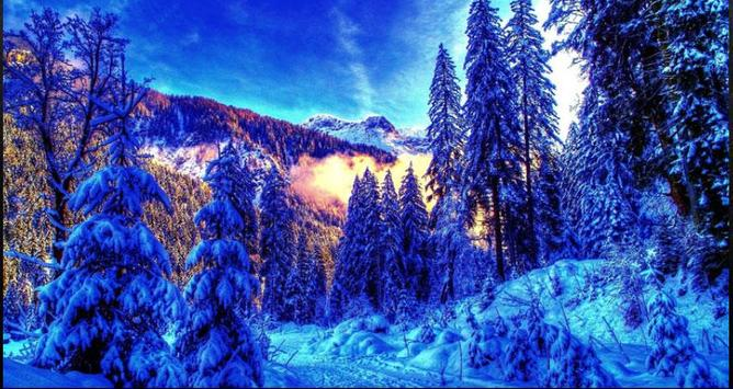 Nice Winter Pictures: Nature Themes, Winter images screenshot 6