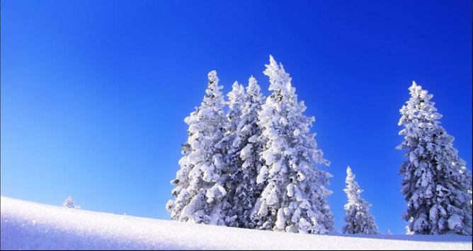 Nice Winter Pictures: Nature Themes, Winter images screenshot 8