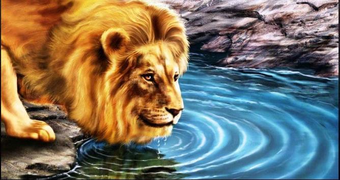 Lion Wallpapers: Free Lion Pics, Lion Backgrounds screenshot 2