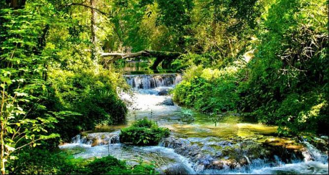 Stream Wallpapers: Stream Images, Natural Pics screenshot 4