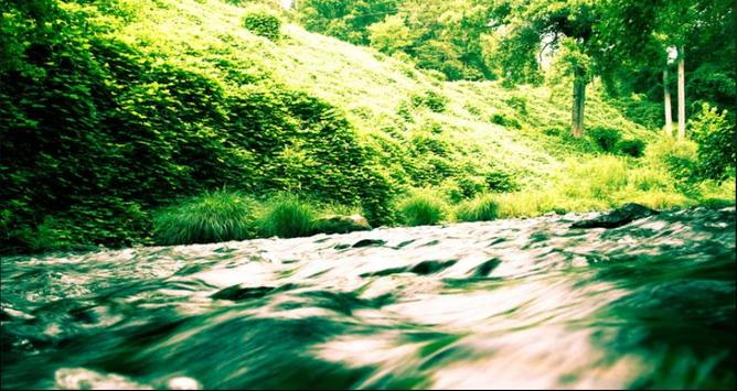 Stream Wallpapers: Stream Images, Natural Pics screenshot 9