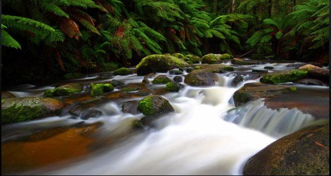 Stream Wallpapers: Stream Images, Natural Pics screenshot 1