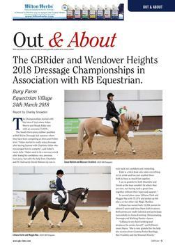 GB Rider Magazine screenshot 8