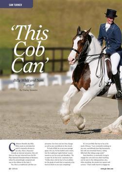 GB Rider Magazine screenshot 9
