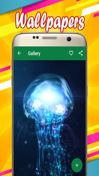 Jellyfish Wallpapers apk screenshot