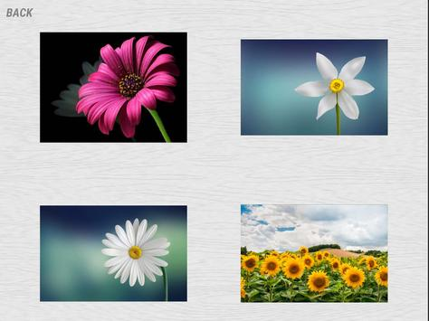 Jigsaw puzzles for Adults. screenshot 1