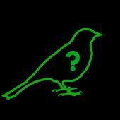 Swedish Birdsong icon