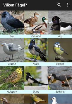 Swedish Birdsong poster