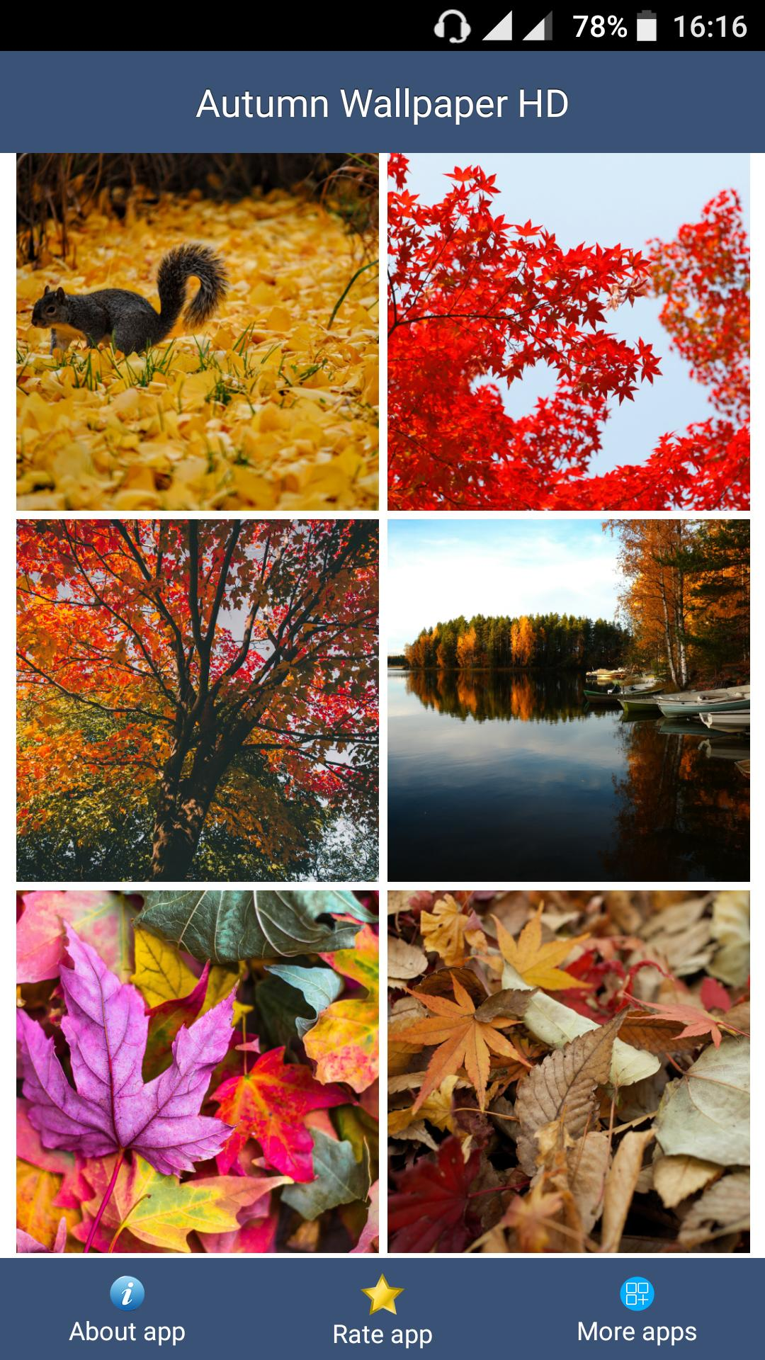 Autumn Wallpaper Hd For Android Apk Download
