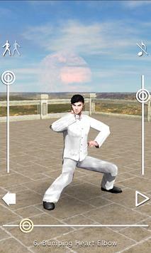 3D Baji Quan poster