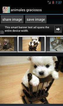 funny animals apk screenshot