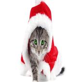 Christmas animals icon