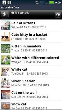 Adorable Cats Live Wallpaper apk screenshot