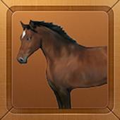 Hourse Race2 icon
