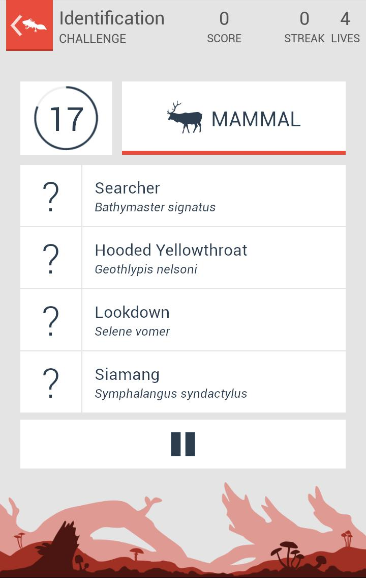 Taxonomy - Animal Quiz for Android - APK Download