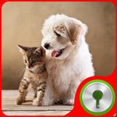 Animals Friendship for Locker icon
