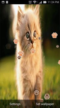 cat live wallpaper apk screenshot