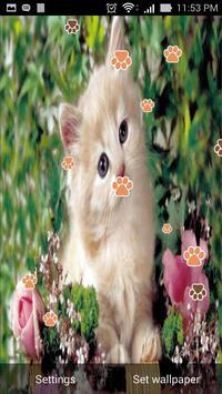 Cute Cat Live Wallpaper screenshot 5