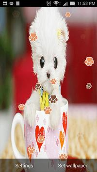 Cute Cat Live Wallpaper screenshot 6
