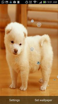 Cute Puppy Live Wallpaper screenshot 5