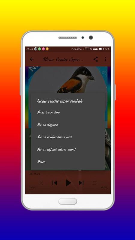√ download suara burung cendet mp3 gacor untuk masteran omgacor. Com.