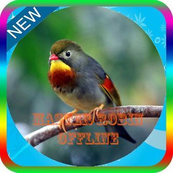 Kicau Master Burung Robin Mp3 poster