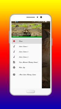 Kicau Burung Sanma Master Mp3 Offline apk screenshot