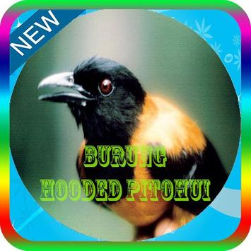 Masteran Burung Hooded Pitohui Mp3 poster