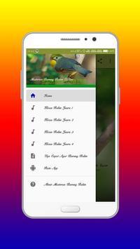 Masteran Burung Robin Offline apk screenshot