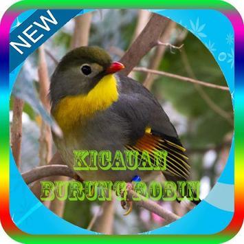 Masteran Burung Robin Offline poster