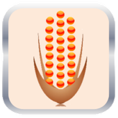 Corn ข้าวโพด icon