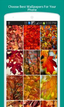 Warm Autumn Live Wallpapers screenshot 6